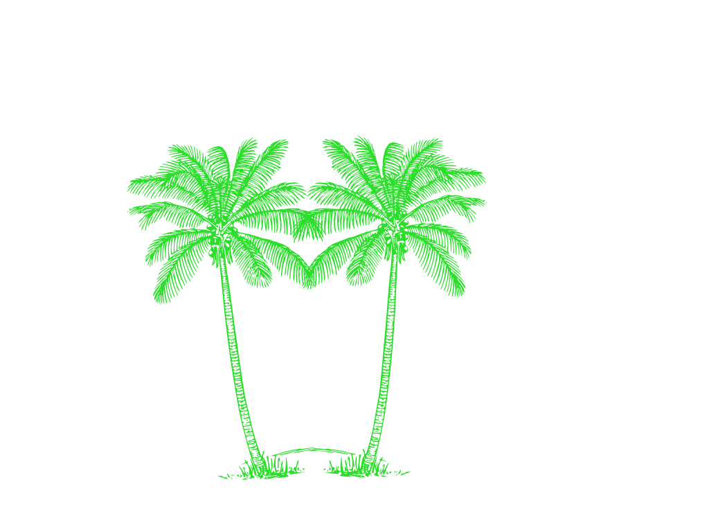 Green palm tree png. Double free images at
