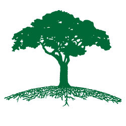 Green roots png. Tree care home ca