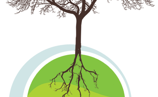 Green roots png. Index of wp content