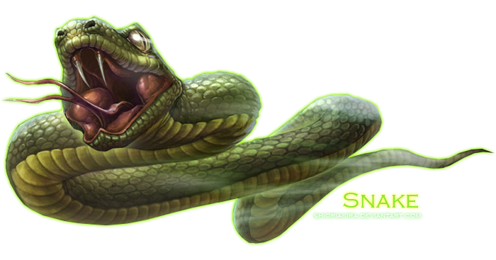 Green snake png. Transparent pictures free icons