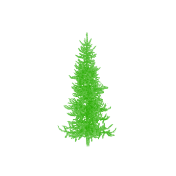 Christmas Greenery Vector.Greenery Vector Holiday Transparent Png Clipart Free