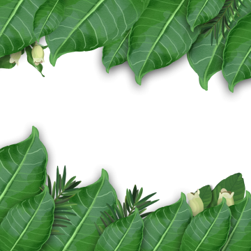 Greenery vector forest border. Tropical leaf watercolor artistic