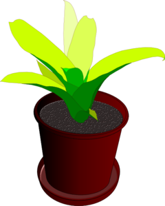 Greenery vector plant. Potted clip art at