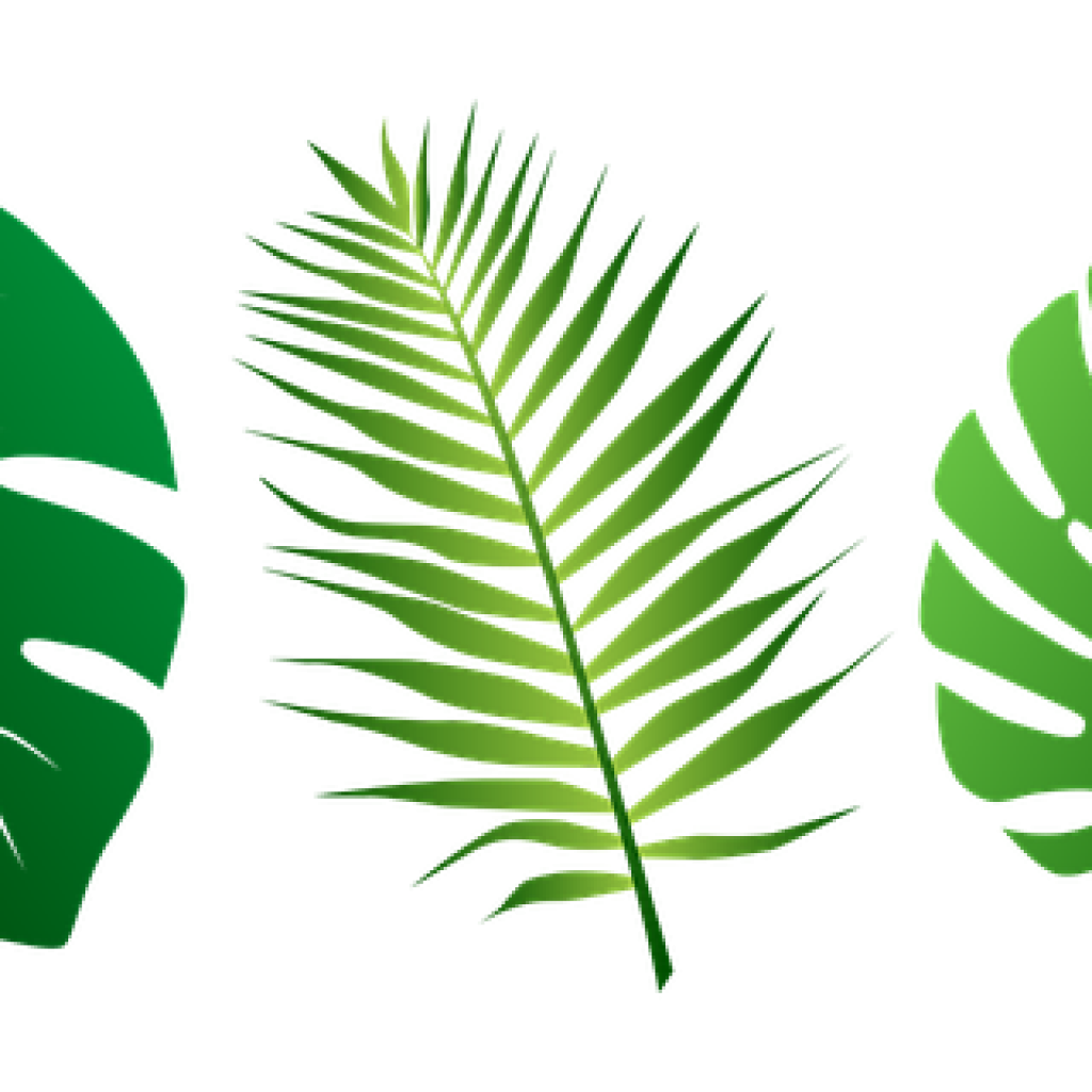 Greenery vector plant. Plants tropical leave