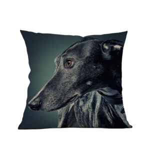 Greyhound vector design. Covers love of greyhounds