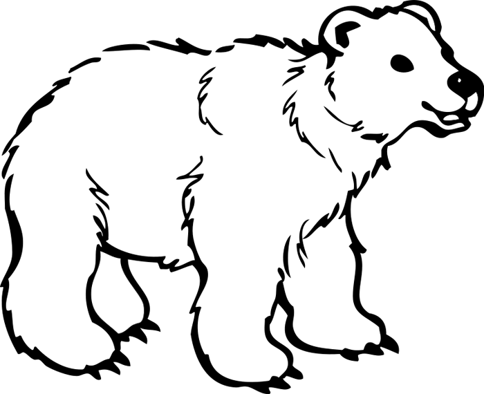 Animations white. Bear clipart polar bear picture library stock