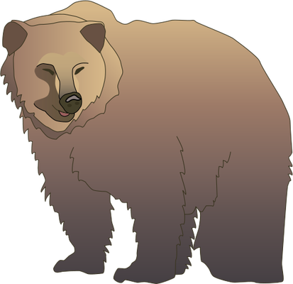 Grizzly drawing animated. Drawn bear pencil and