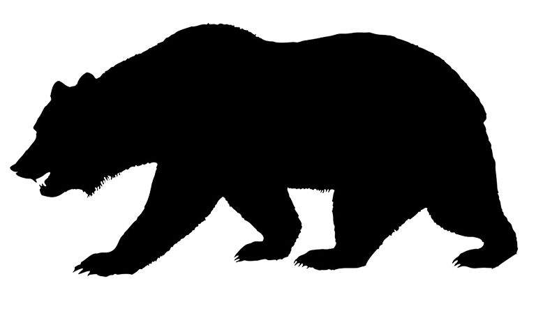 Grizzly drawing forest. Silhouette of bear jogging