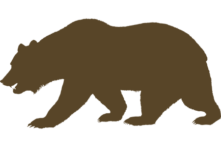 Grizzly drawing pizzly bear. Download wallpaper clipart full