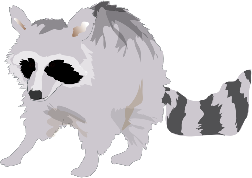 Grizzly drawing symbol. Procyon lotor raccoon illustration