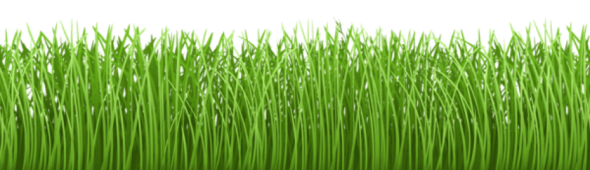Ground clipart clear background grass. Download cover transparent png