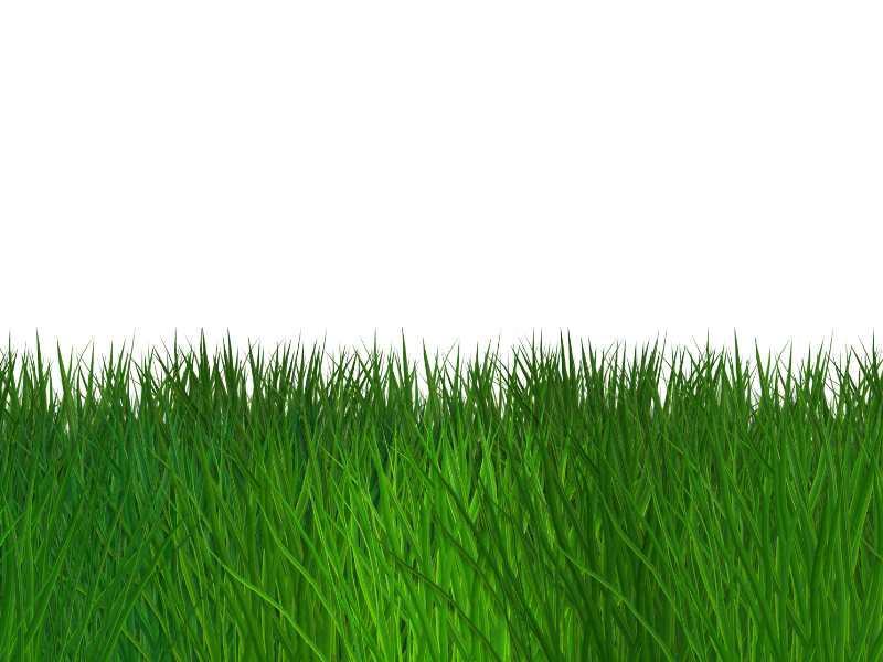 Ground clipart clear background grass. Border seamless transparent free