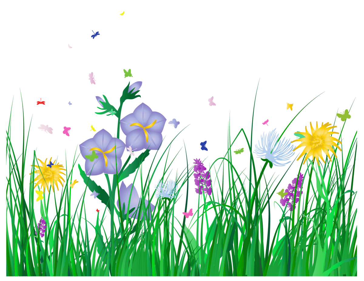 Transparent grass and flowers. Nature clipart spring picture free download
