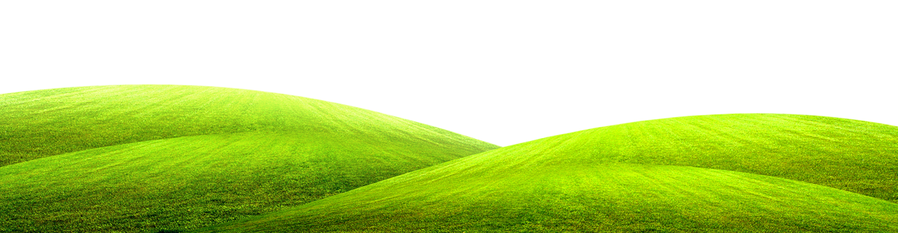 Dirt ground png. Green grass picture gallery