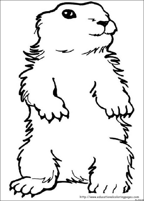 Groundhog clipart coloring page. Fresh free day unique
