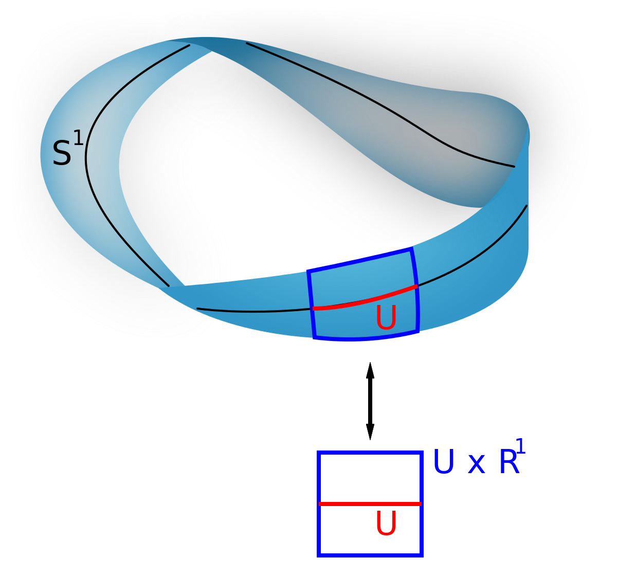 Vector types families. Bundle wikipedia
