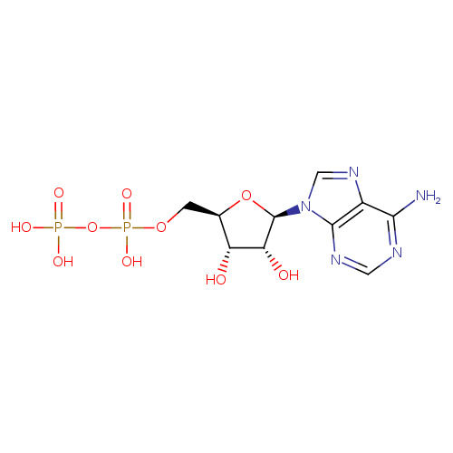 Group vector ynd1. Adp ymdb yeast metabolome