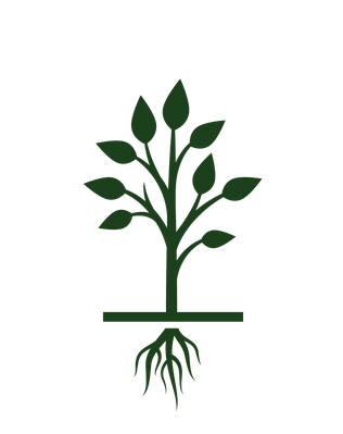 Growth clipart flower cycle. Tree growing life icon
