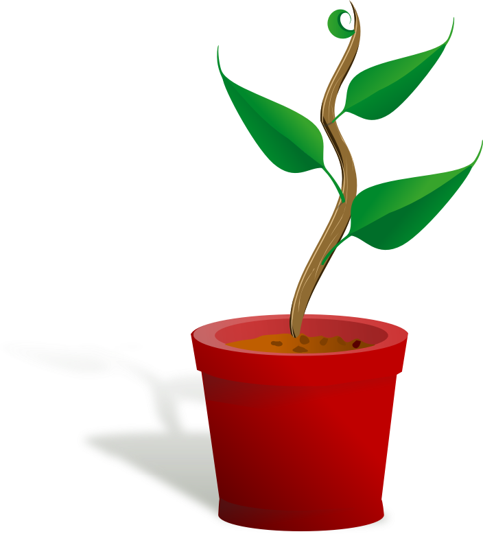 Growth clipart plant. Church free