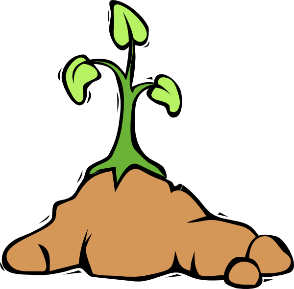 Growth clipart plant. Free growing cliparts download