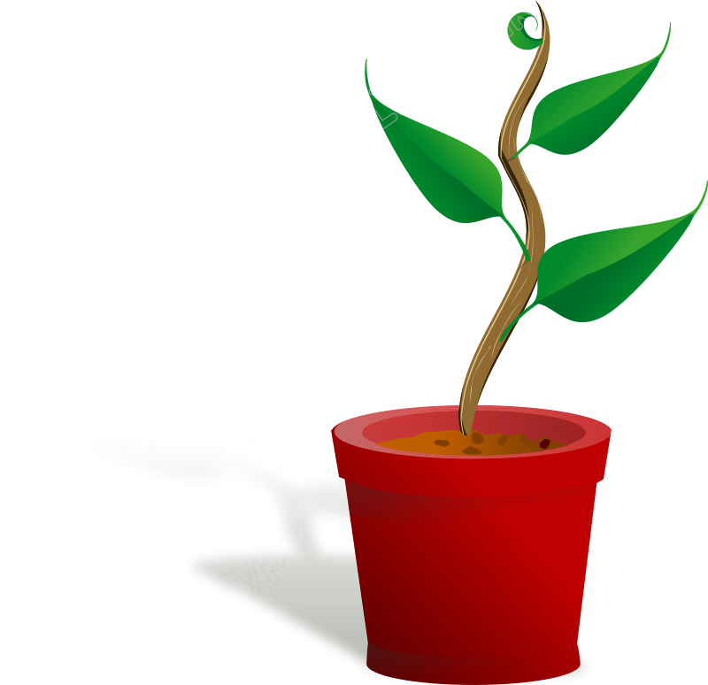 Growth vector plant. Free download svg image