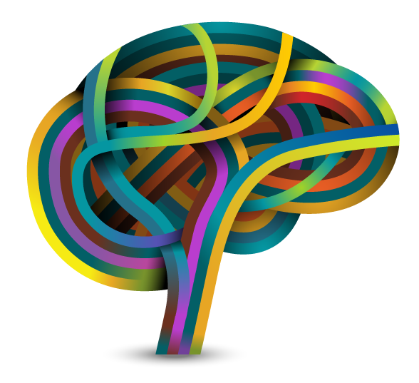 Cerebro vector png. Developing a growth mindset