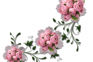 Guias de flores png. Image related wallpapers