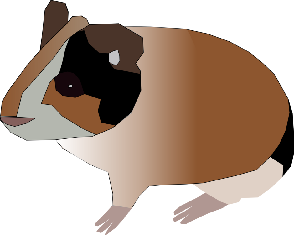 Hamster clipart guinea pig. Pet pigs rodent free