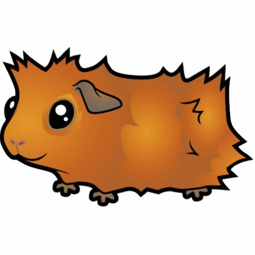Guinea clipart guinea pig. Silhouette at getdrawings com