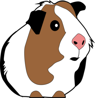 Hamster clipart guinea pig. Pet pigs rodent computer