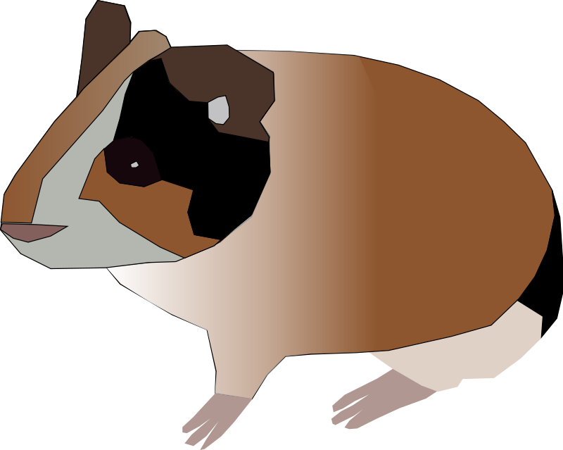 Guinea clipart guinea pig. Free animals machovka open