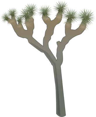 Gum Drawing Tree Trunk Transparent Png Clipart Free Download Ya