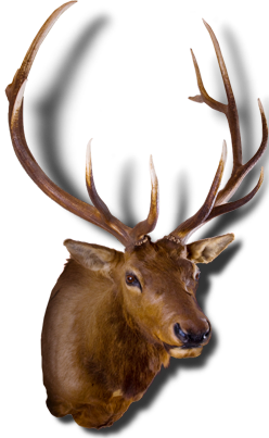 Guns clipart. Deer hunting free png