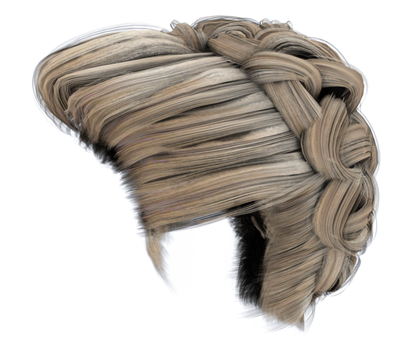 Hair bun png. Stock images side blonde