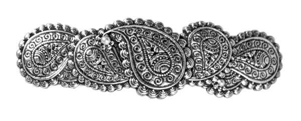 Hair clips png. Clip barrette accessory paisley