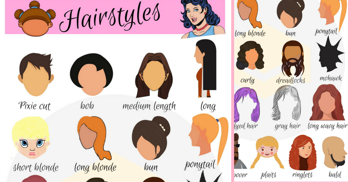 Haircut clipart wild hair. Hairstyle vocabulary in english