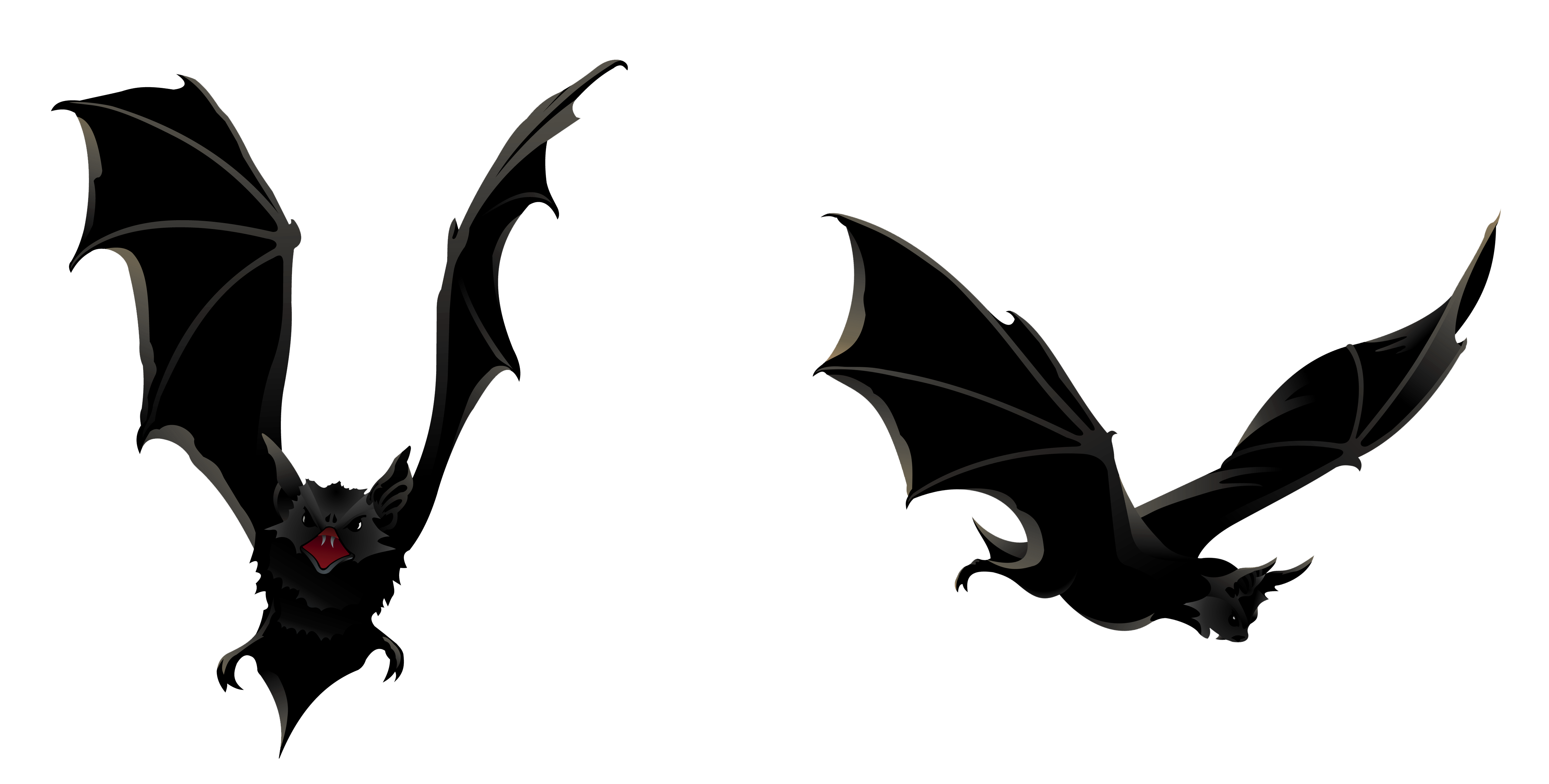 Halloween bat png. Bats picture gallery yopriceville
