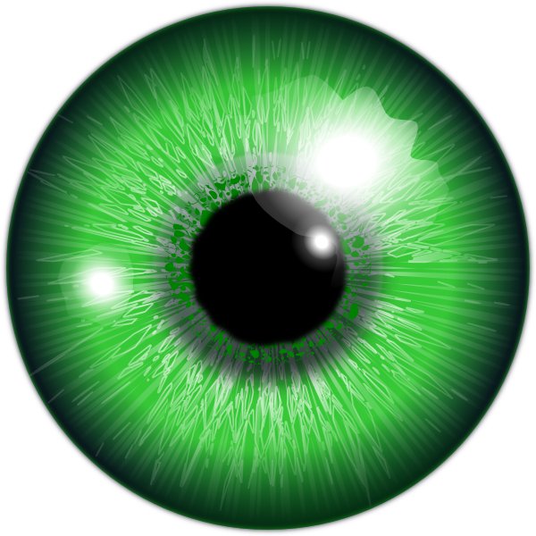 Green eyes png. Eye transparent pictures free
