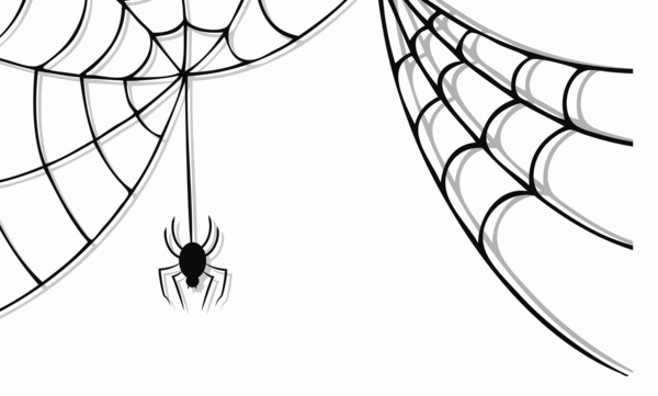 Png spider web. Halloween photo arts