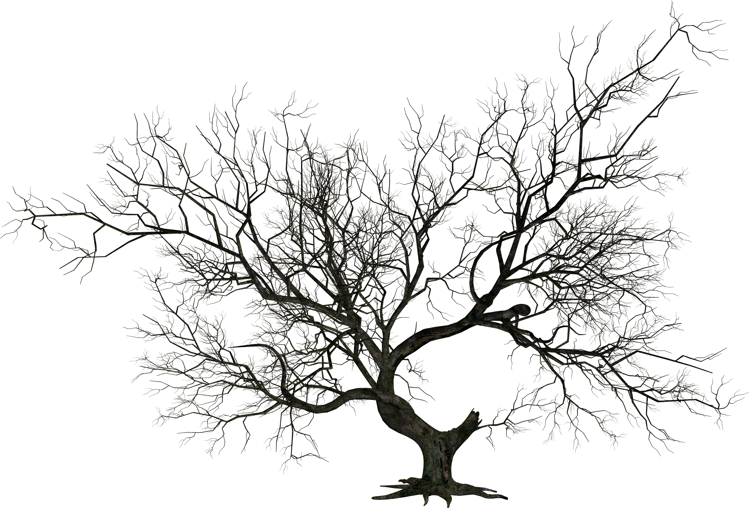 Halloween tree png. Transparent pictures free icons