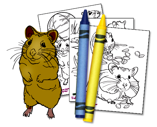 Hamster clipart gerbil. Small world download activity