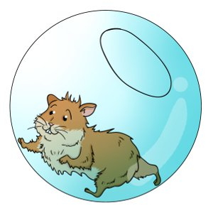 Hamster clipart hamster ball. Balls choosing a exercise