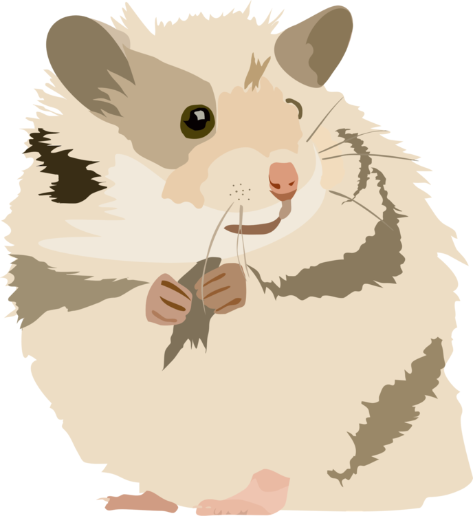 Hamster clipart gerbil. Golden rodent mouse free