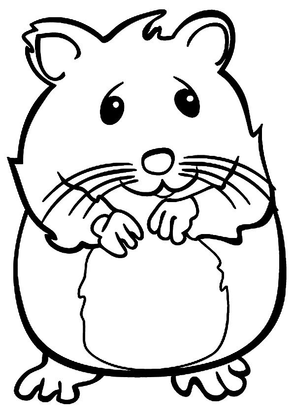 Hamster clipart humphrey. The coloring pages plantovizor