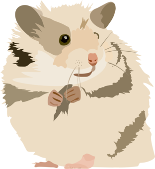 Hamster clipart animated. Wheel ball cage the
