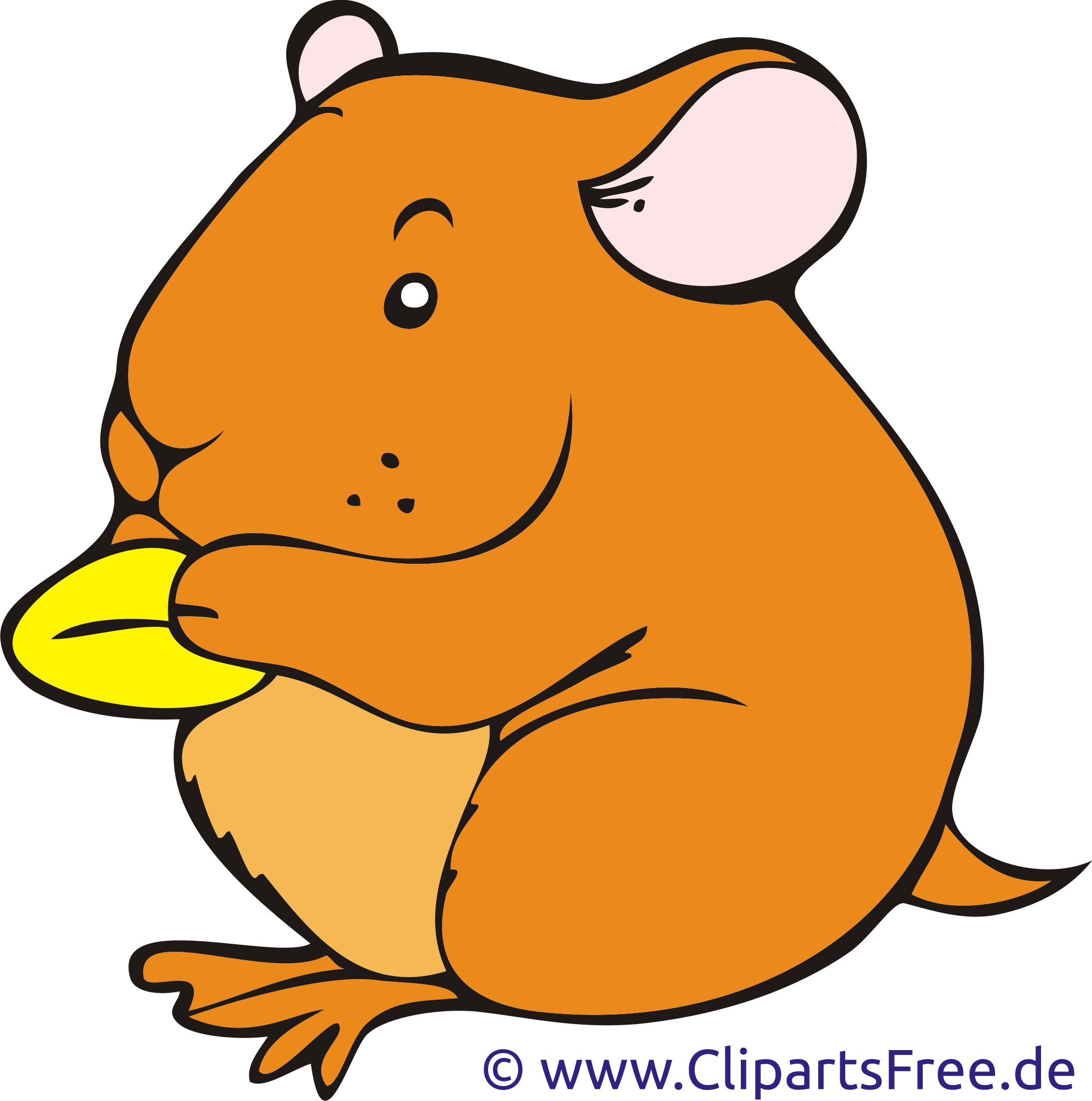 Hamster clipart real. Clip art library food