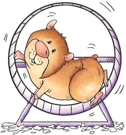 Hamster clipart real. Best art gallery