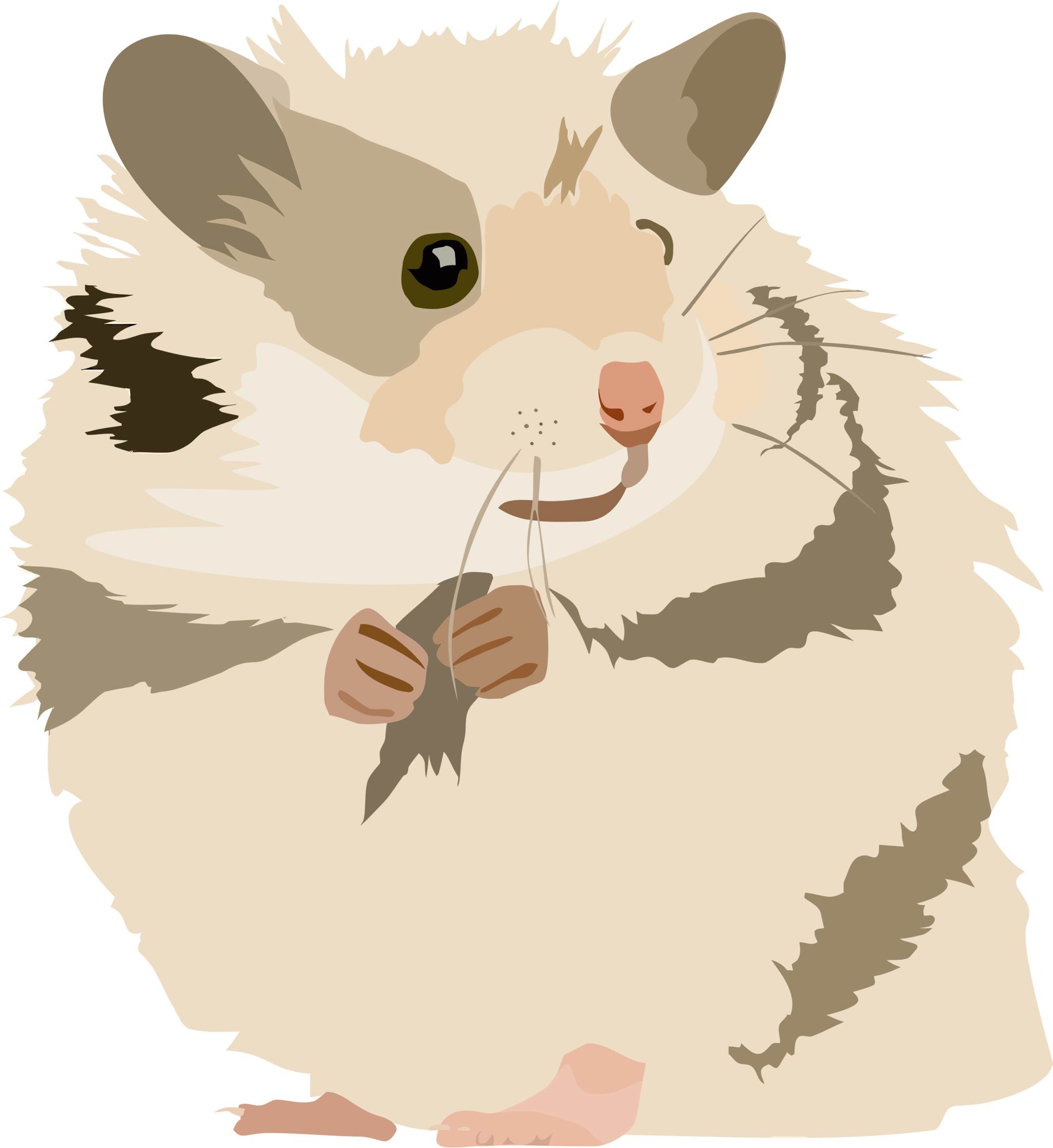 Hamster clipart transparent background. Panda free images hamsterclipart