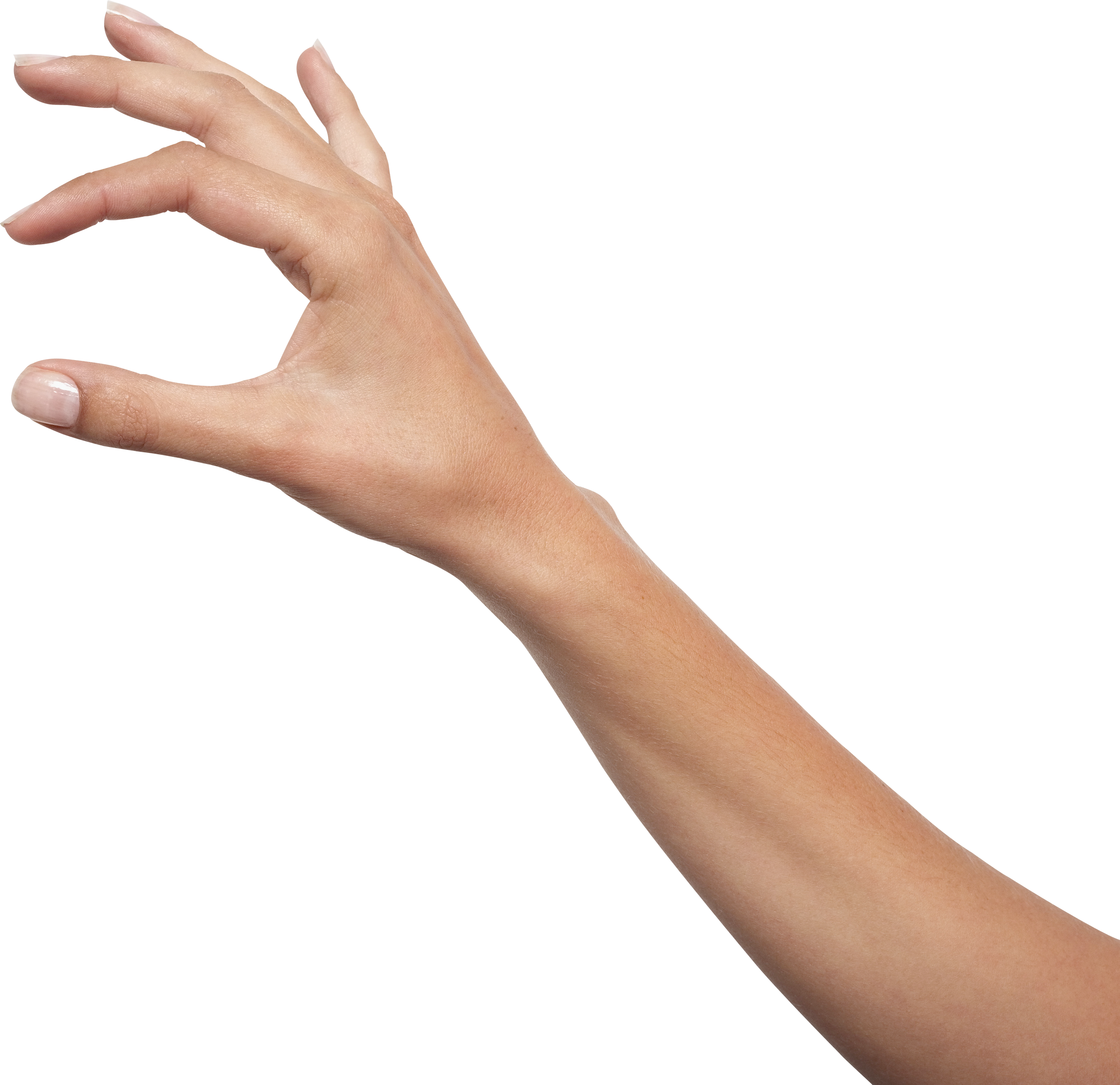 Hand and arm png. Hands image purepng free