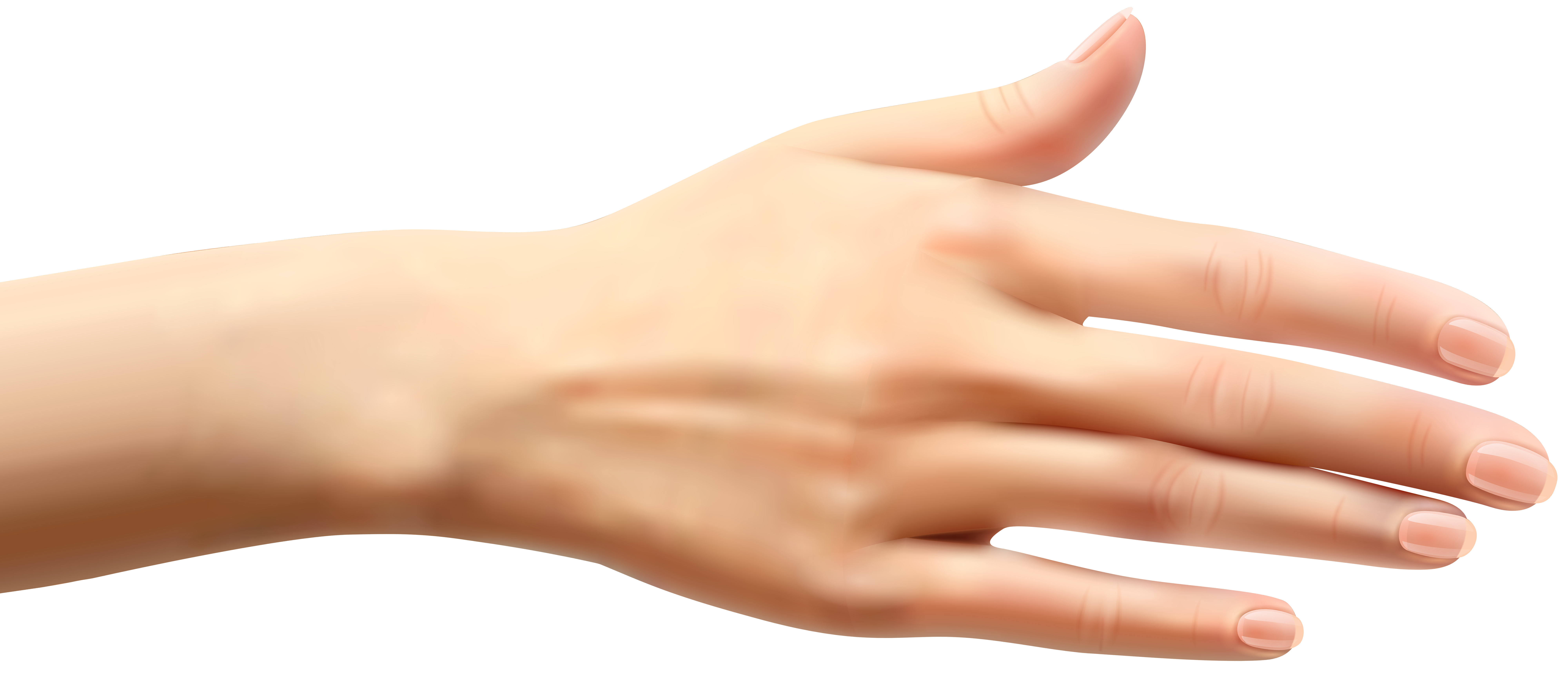 female hands png